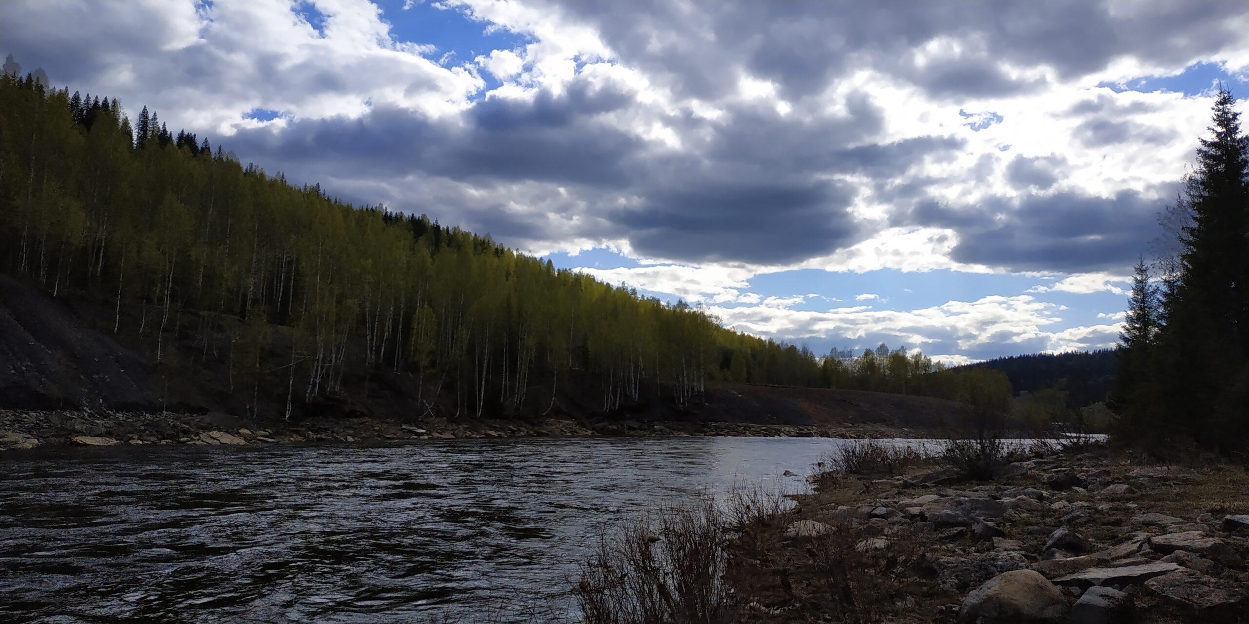 В лесах Пермского края введен особый противопожарный режим